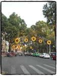 Ho Chi Minh Strassen